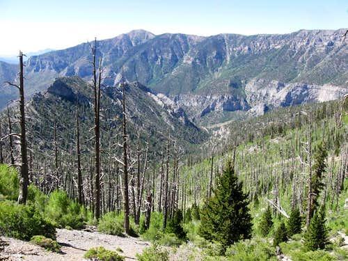 Trail Canyon, Cockscomb Ridge & Griffith Peak