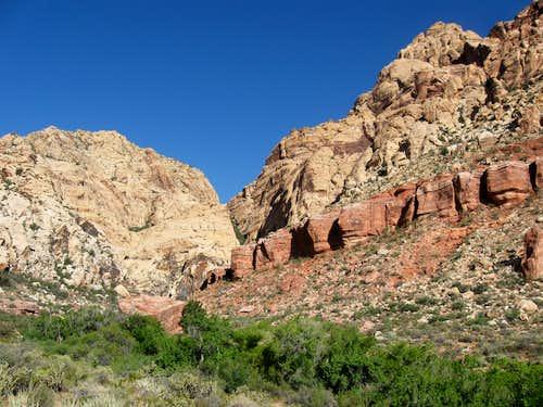Greenery Along Sandstone Wash Creek