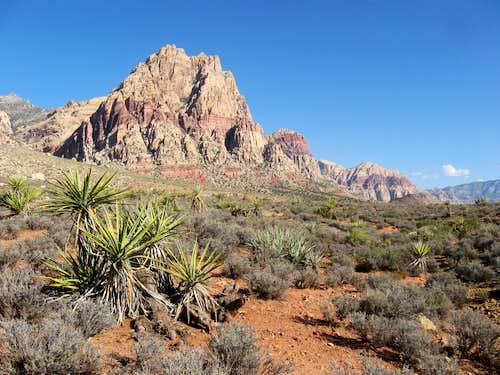 Mount Wilson & Yucca