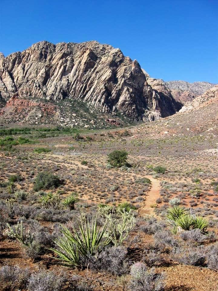 Looking Back at Sandstone Peak From the Overlook Loop