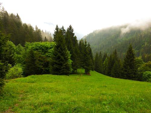 Lomar meadows