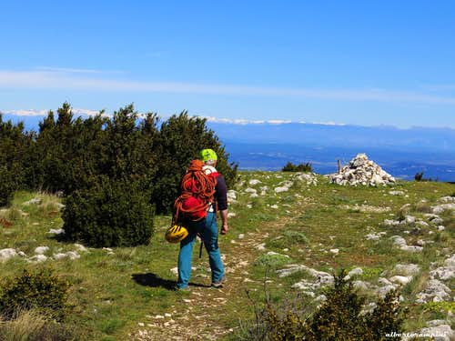Sainte-Victoire, crossing the summit plateau
