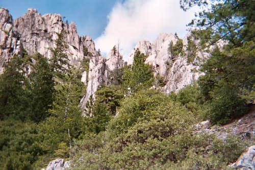 Looking up at the Crags from...