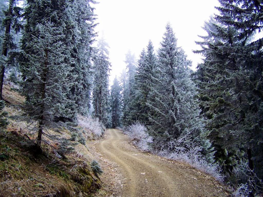 Mountain road to the peak