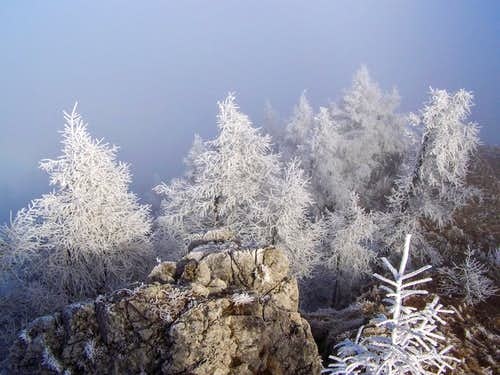 Winter scene on Urslja gora