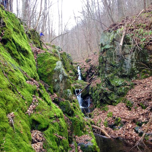 Hawksbill Creek