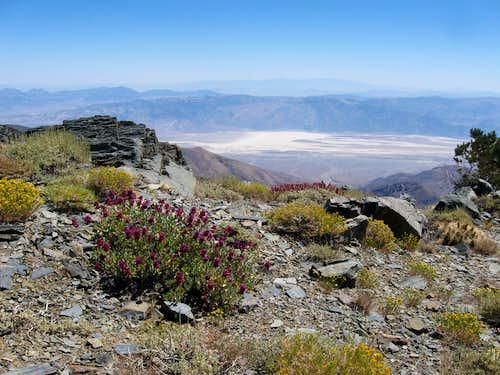 Badwater Basin From Bennett Peak