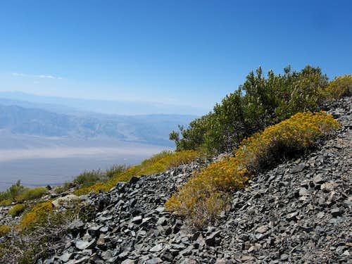 Looking West Towards the High Sierra