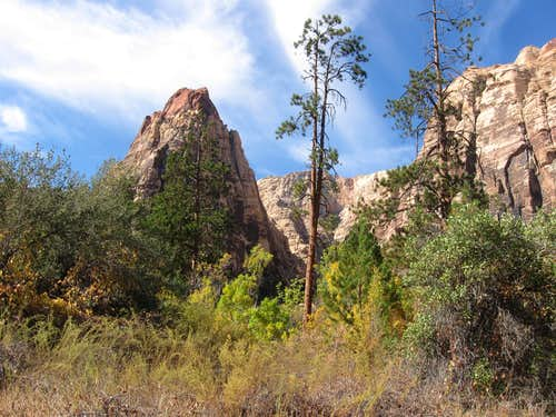Pine Creek Canyon - 11.6.2016