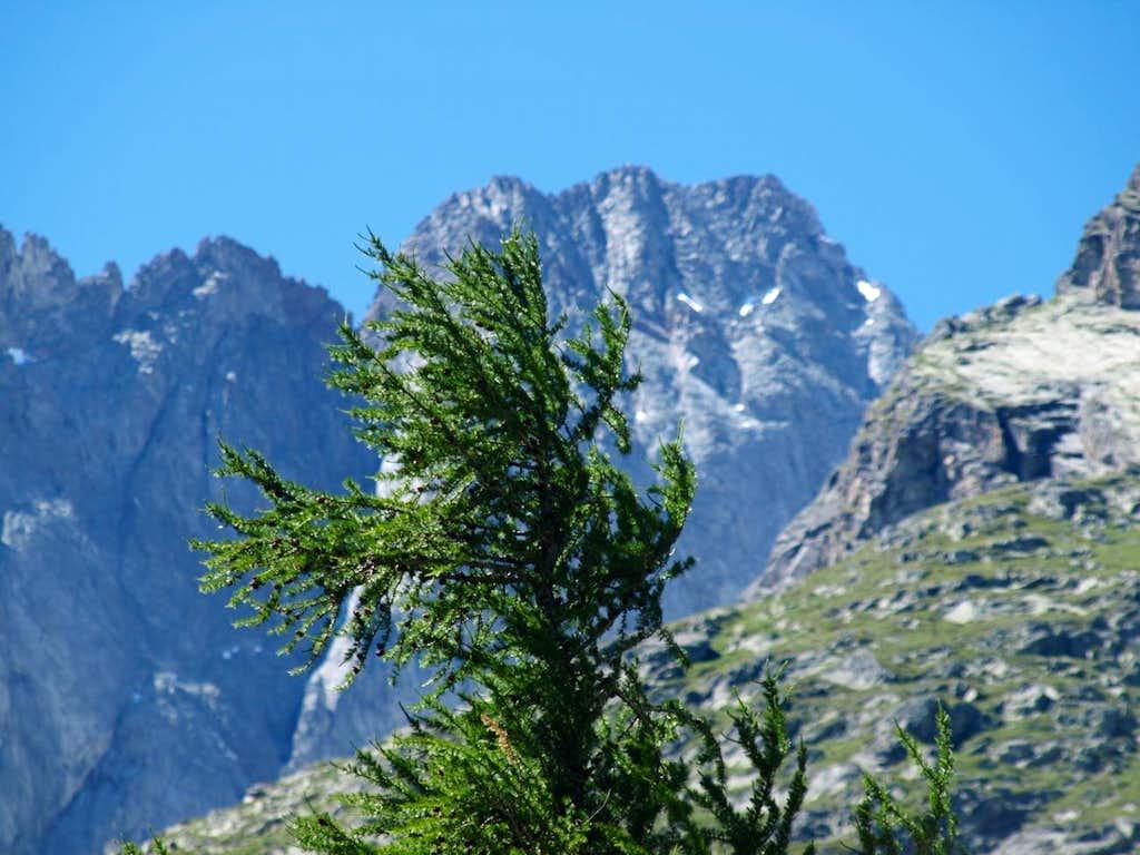 Secondary vallon from Greuvettaz to Val Ferret 2016