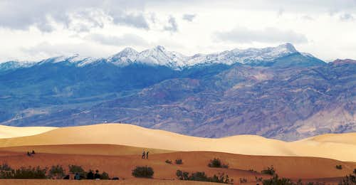 Mesquite Dunes and Snowy Grapevines