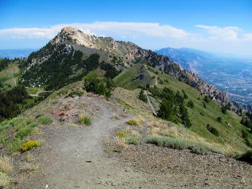 Willard Peak from Point