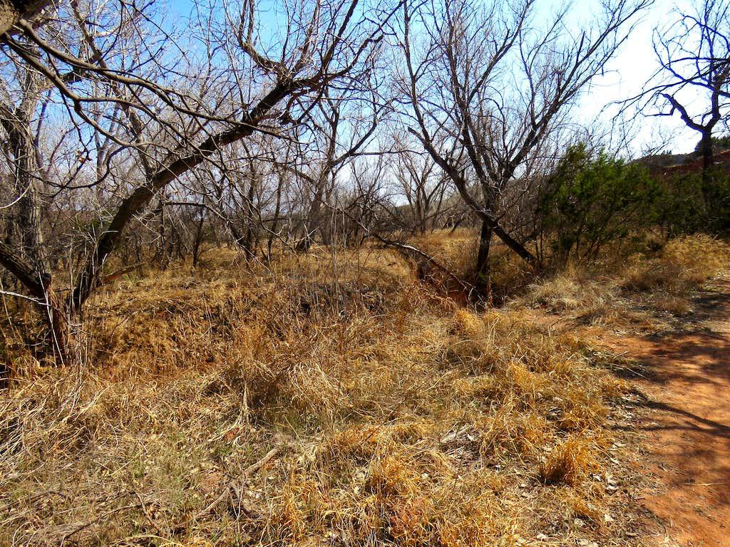 On Rojo Grande Trail