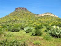 Brown\'s Mountain - Scottsdale