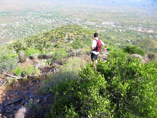 Looking back down towards Cave Creek from just below the summit