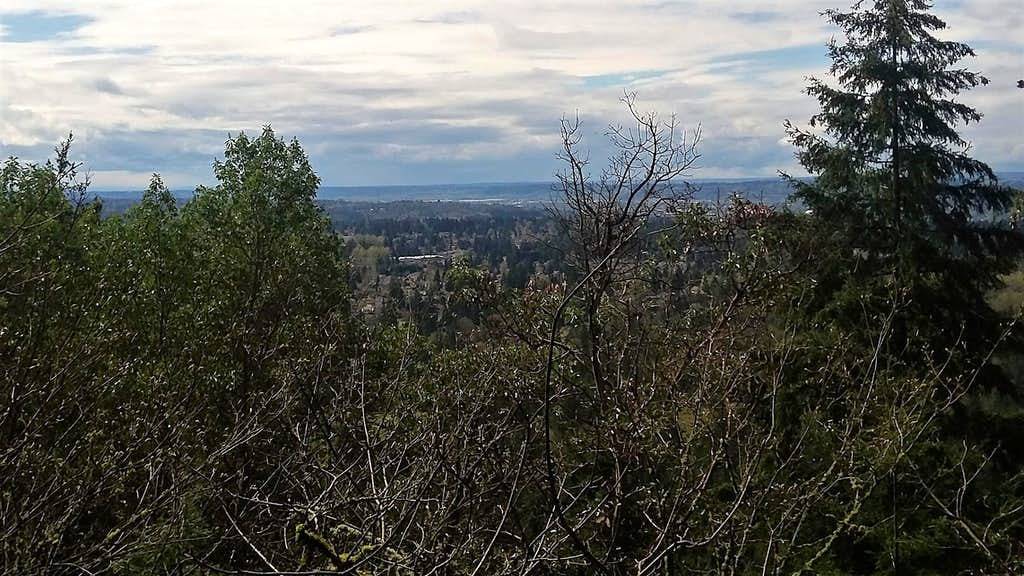 De Leo Wall Viewpoint