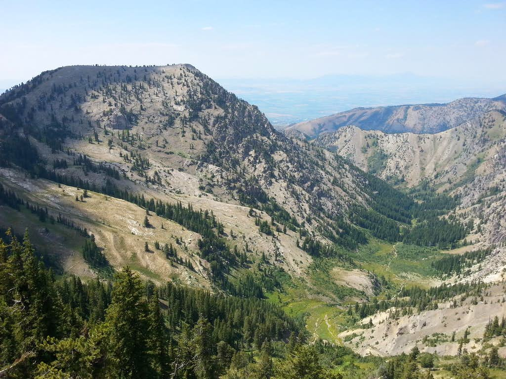 Flat Top and Birch Canyon