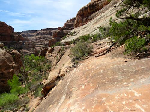 Slickrock pathway in the side canyon
