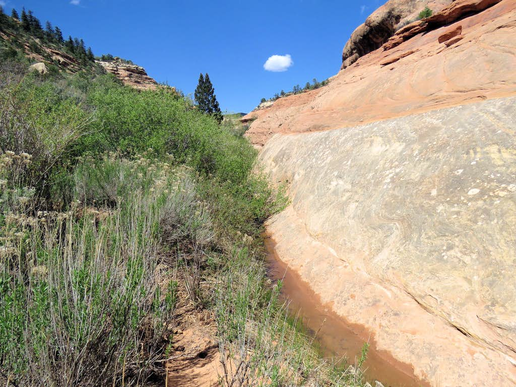 South Fork of Mule Canyon