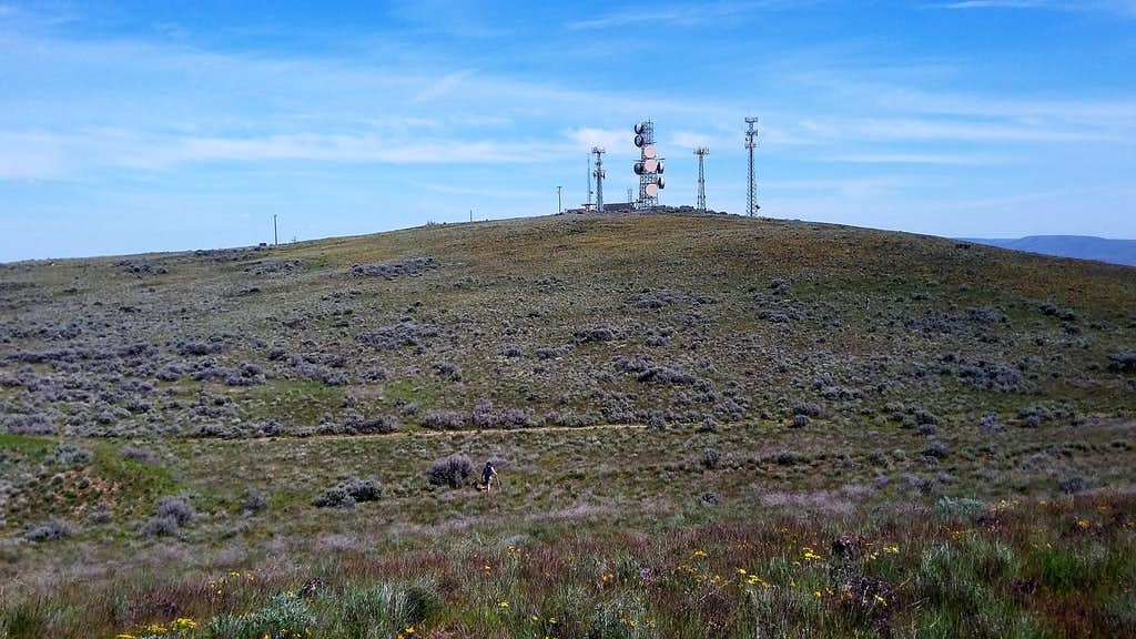 The summit of Selah Butte