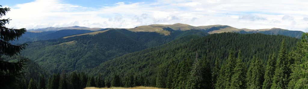 The eastern and central segment of the Căpăţânii Mountains