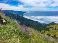 South view along the way Cone Peak Sea to Sky Trail Big Sur