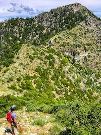Cone Peak Sea to Sky Trail Big Sur