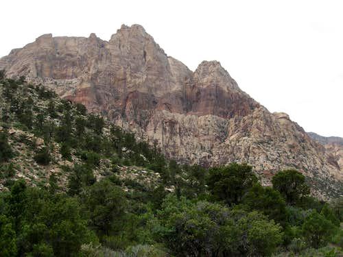 Mount Wilson Behind Potato Knoll