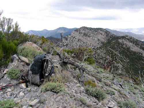 On the Summit of Burnt Peak Looking Back Towards El Bastardo